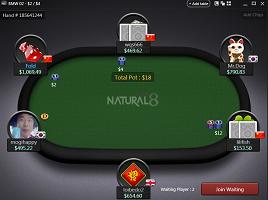 Natural8 asztal