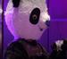panda-l.png